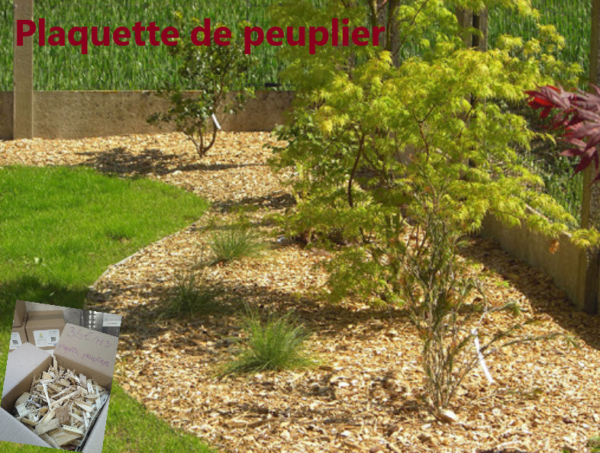 plaquette peuplier_paillage_copeaux bois_